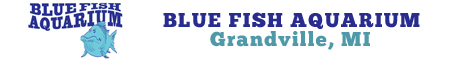 Blue Fish Aquarium Coupons Deals Specials Grandville MI | SuperSavings.com